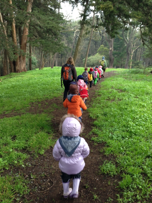 kindergarten and preschool children in nature